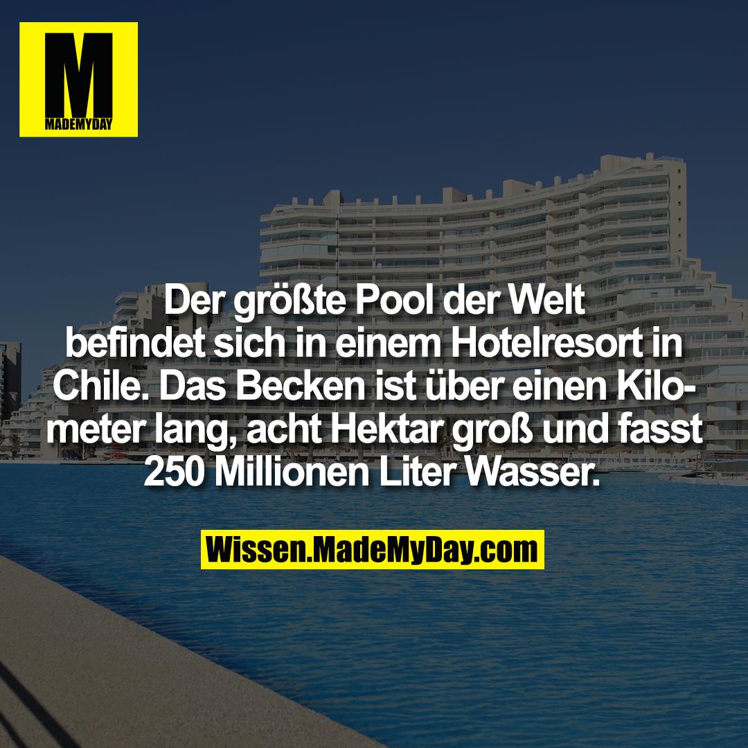 Der größte Pool der Welt befindet sich in einem Hotelresort in Chile. Das Becken ist über einen Kilometer lang, acht Hektar groß und fasst 250 Millionen Liter Wasser.