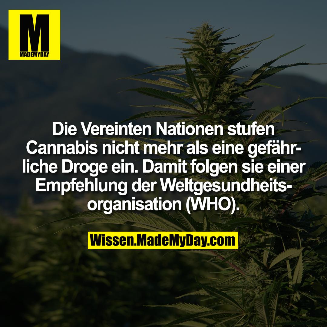 Die Vereinten Nationen stufen Cannabis nicht mehr als eine gefährliche Droge ein. Damit folgen sie einer Empfehlung der Weltgesundheitsorganisation (WHO).