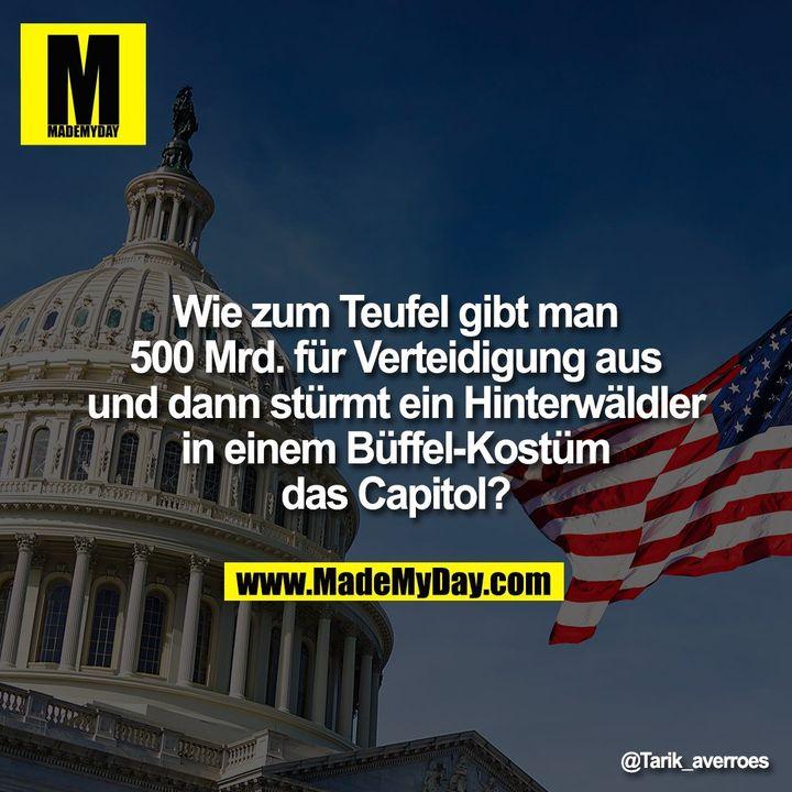 Wie zum Teufel gibt man<br /> 500 Mrd. für Verteidigung aus<br /> und dann stürmt ein Hinterwäldler<br /> in einem Büffel-Kostüm<br /> das Capitol?