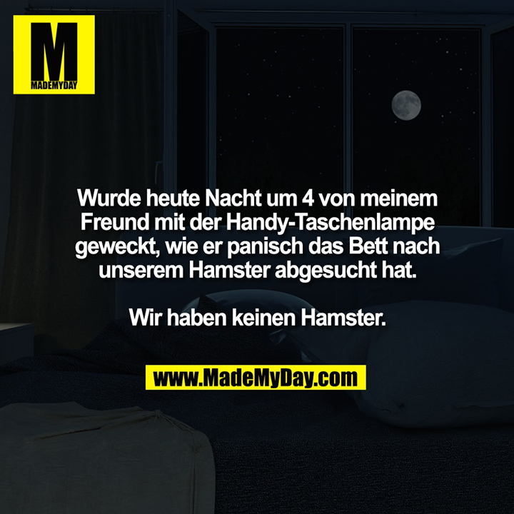 Wurde heute Nacht um 4 von meinem<br /> Freund mit der Handy-Taschenlampe<br /> geweckt, wie er panisch das Bett nach<br /> unserem Hamster abgesucht hat.<br /> <br /> Wir haben keinen Hamster.
