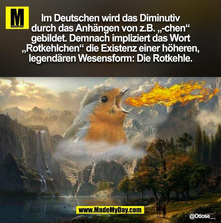 """Im Deutschen wird das Diminutiv<br /> durch das Anhängen von z.B. """"-chen""""<br /> gebildet. Demnach impliziert das Wort<br /> """"Rotkehlchen"""" die Existenz einer höheren,<br /> legendären Wesensform: Die Rotkehle. @Otiose__<br /> (BILD)"""