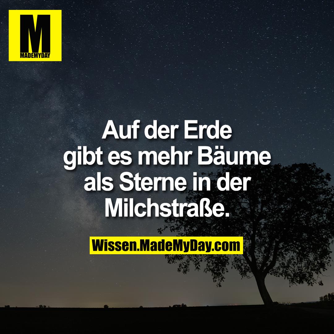 Auf der Erde gibt es mehr Bäume als Sterne in der Milchstraße.