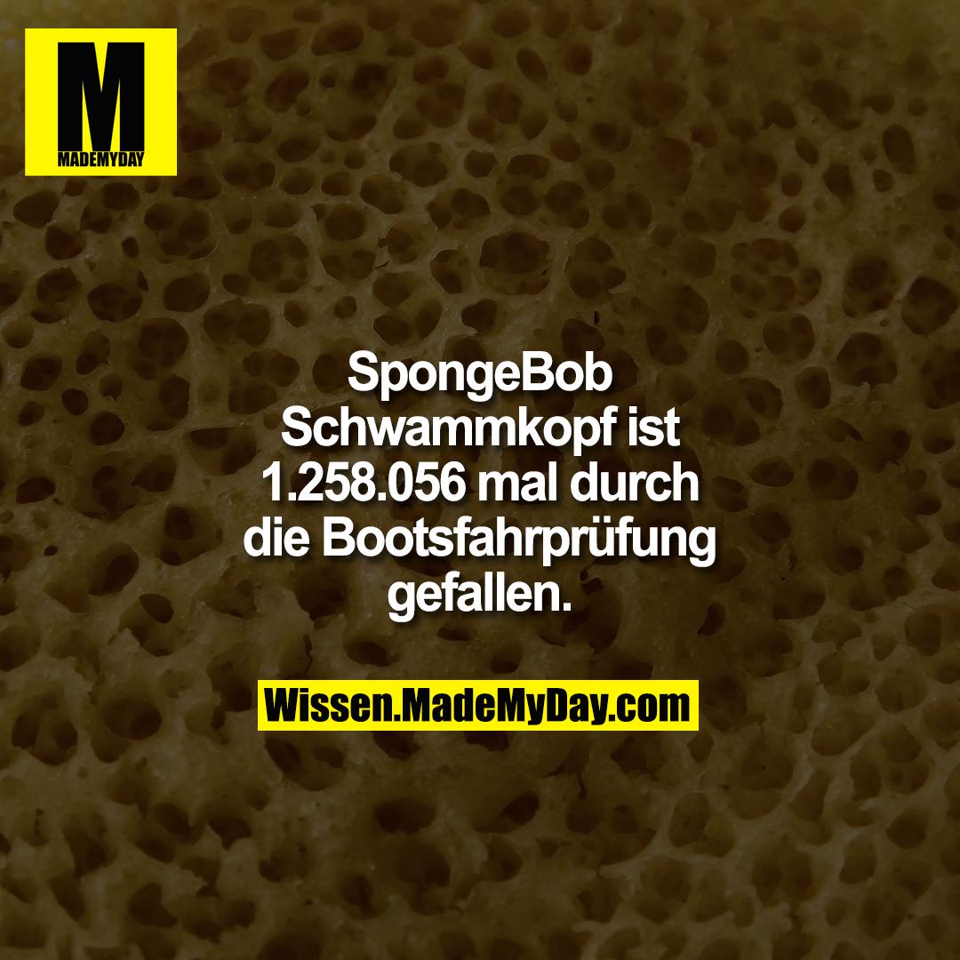 SpongeBob Schwammkopf ist 1.258.056 mal durch die Bootsfahrprüfung gefallen.