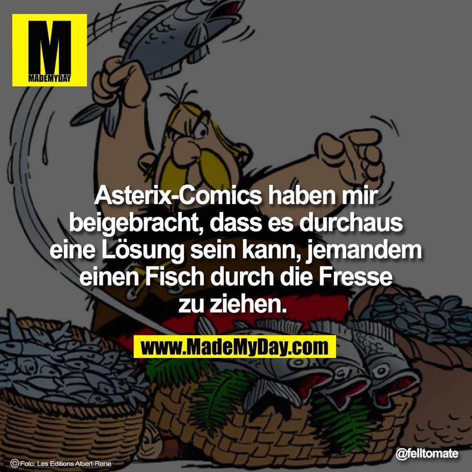 Asterix-Comics haben mir<br /> beigebracht, dass es durchaus<br /> eine Lösung sein kann, jemandem<br /> einen Fisch durch die Fresse<br /> zu ziehen.