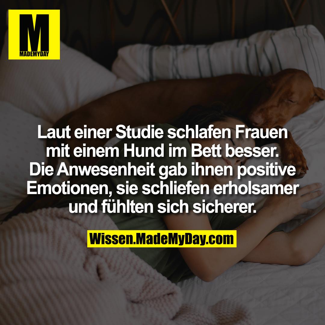 Laut einer Studie schlafen Frauen mit einem Hund im Bett besser. Die Anwesenheit gab ihnen positive Emotionen, sie schliefen erholsamer und fühlten sich sicherer.