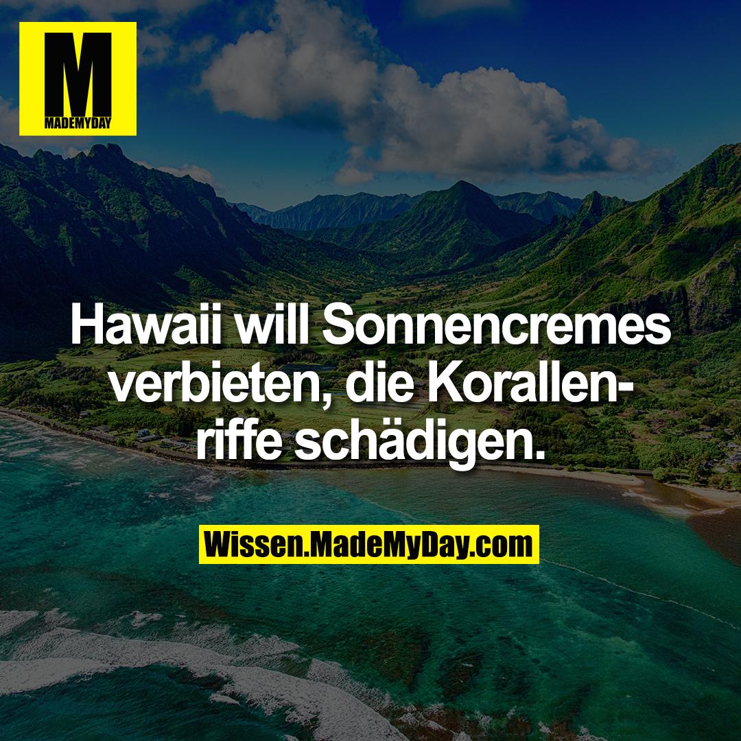 Hawaii will Sonnencremes verbieten, die Korallenriffe schädigen.