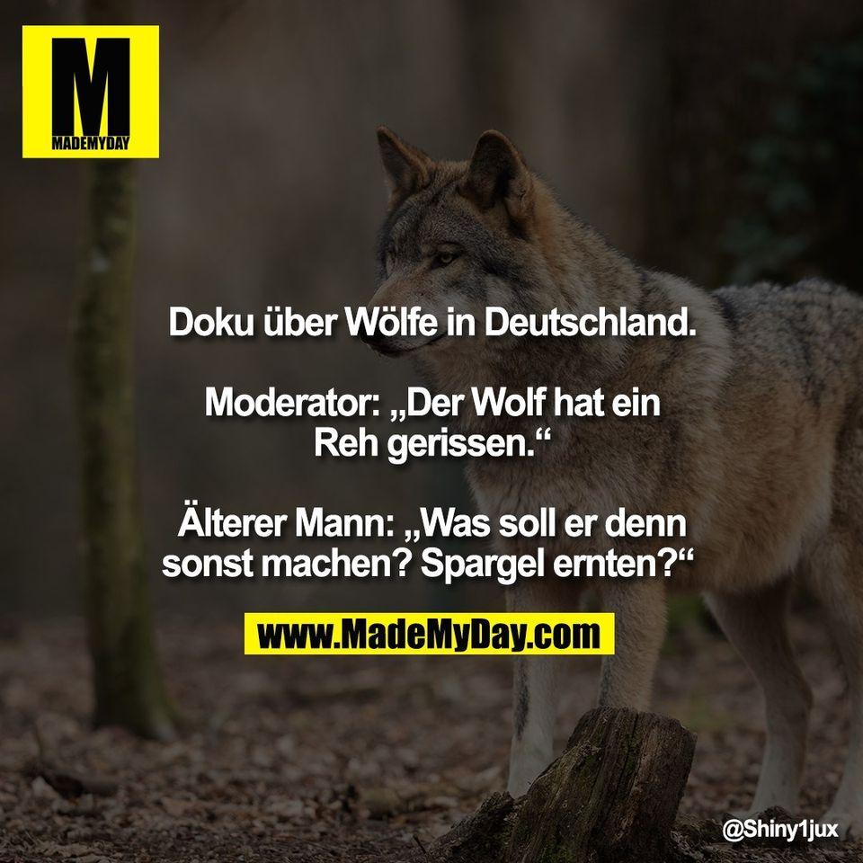 """Doku über Wölfe in Deutschland.<br /> <br /> Moderator: """"Der Wolf hat ein<br /> Reh gerissen.""""<br /> <br /> Älterer Mann: """"Was soll er denn<br /> sonst machen? Spargel ernten?"""""""