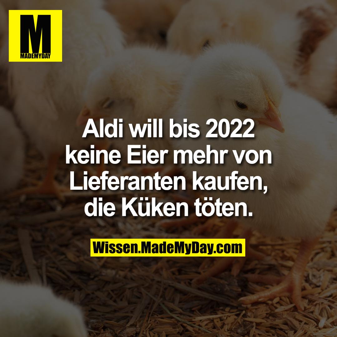 Aldi will bis 2022 keine Eier mehr von Lieferanten kaufen, die Küken töten.