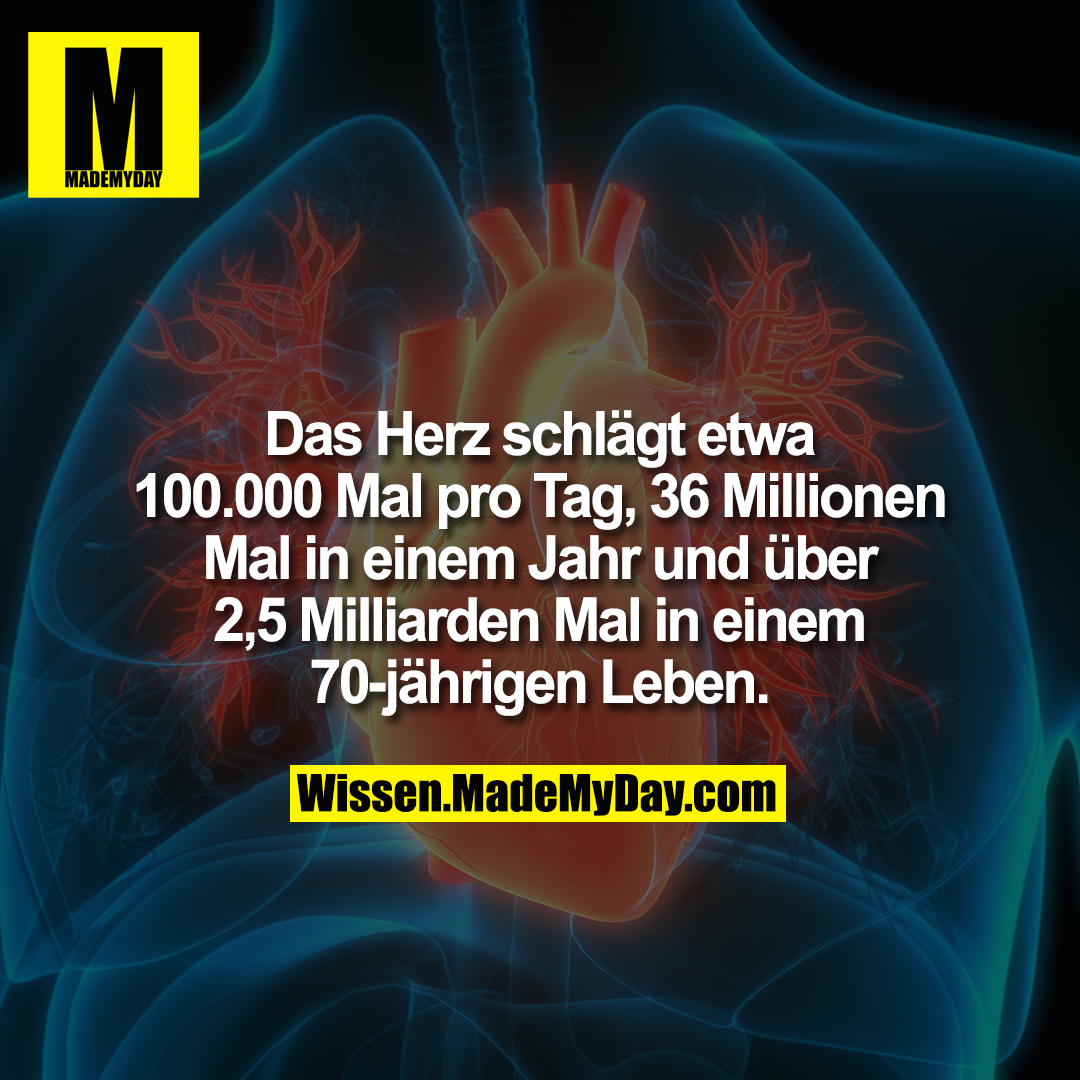 Das Herz schlägt etwa 100.000 Mal pro Tag, 36 Millionen Mal in einem Jahr und über 2,5 Milliarden Mal in einem 70-jährigen Leben.
