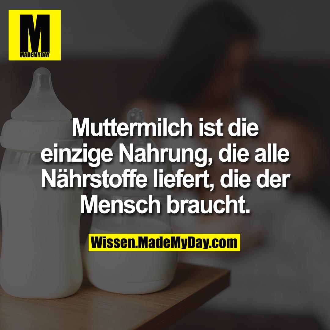 Muttermilch ist die einzige Nahrung, die alle Nährstoffe liefert, die der Mensch braucht.