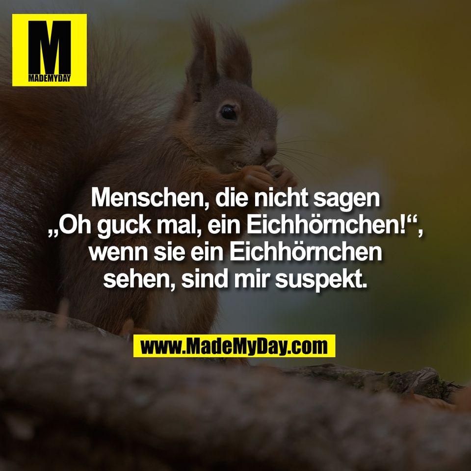 """Menschen, die nicht sagen<br /> """"Oh guck mal, ein Eichhörnchen!"""",<br /> wenn sie ein Eichhörnchen<br /> sehen, sind mir suspekt."""