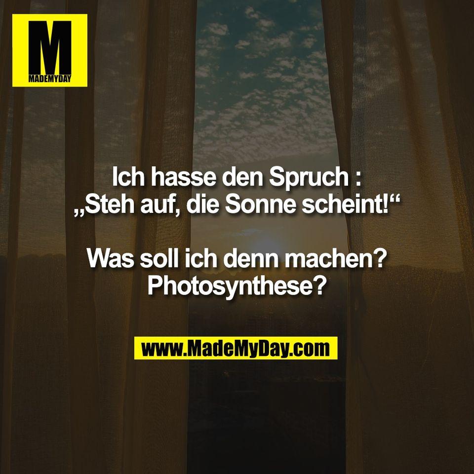 """Ich hasse den Spruch :<br /> """"Steh auf, die Sonne scheint!""""<br /> <br /> Was soll ich denn machen?<br /> Photosynthese?"""