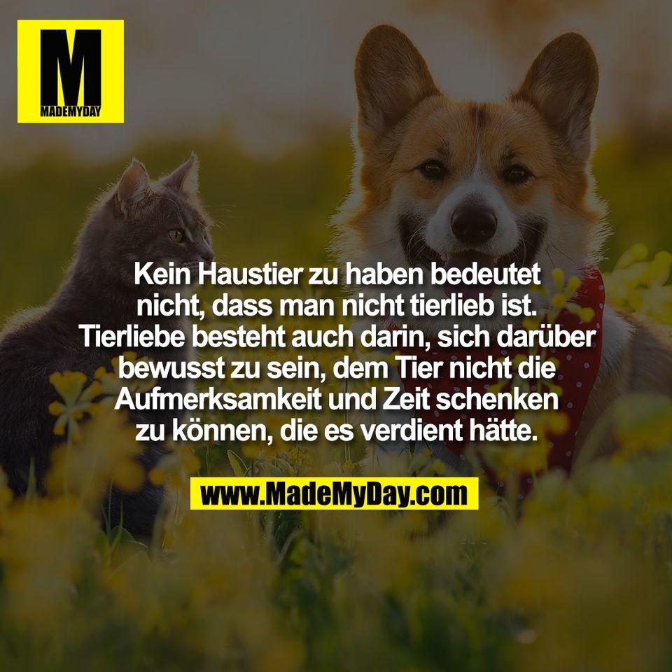 Kein Haustier zu haben bedeutet<br /> nicht, dass man nicht tierlieb ist.<br /> Tierliebe besteht auch darin, sich darüber<br /> bewusst zu sein, dem Tier nicht die<br /> Aufmerksamkeit und Zeit schenken<br /> zu können, die es verdient hätte.