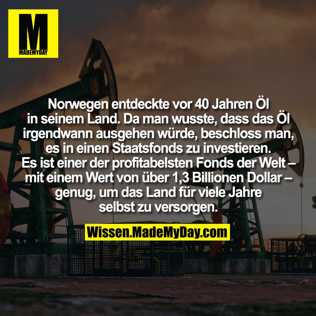 Norwegen entdeckte vor 40 Jahren Öl in seinem Land. Da man wusste, dass das Öl irgendwann ausgehen würde, beschloss man, es in einen Staatsfonds zu investieren. Es ist einer der profitabelsten Fonds der Welt – mit einem Wert von über 1,3 Billionen Dollar – genug, um das Land für viele Jahre selbst zu versorgen.