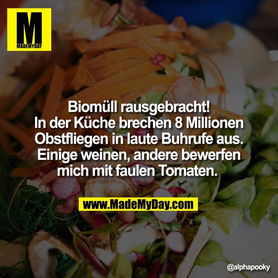 Biomüll rausgebracht!<br /> In der Küche brechen 8 Millionen<br /> Obstfliegen in laute Buhrufe aus.<br /> Einige weinen, andere bewerfen<br /> mich mit faulen Tomaten.