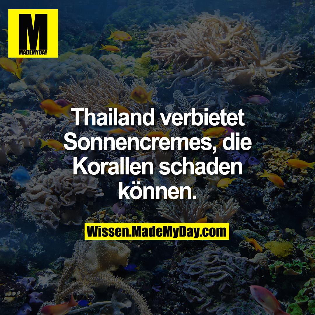 Thailand verbietet Sonnencremes, die Korallen schaden können.
