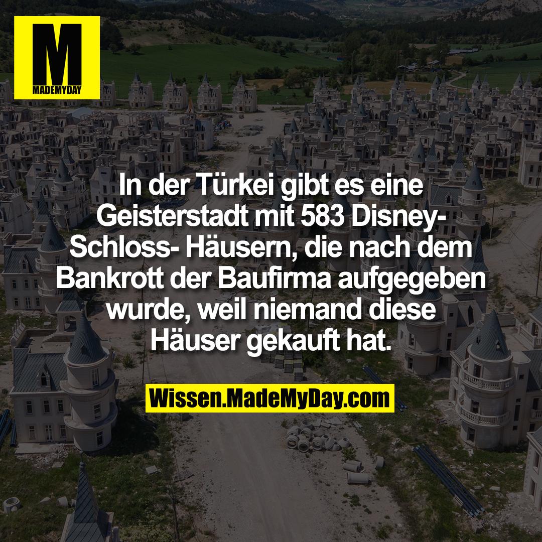 In der Türkei gibt es eine Geisterstadt mit 583 Disney-Schloss-Häusern, die nach dem Bankrott der Baufirma aufgegeben wurde, weil niemand diese Häuser gekauft hat.