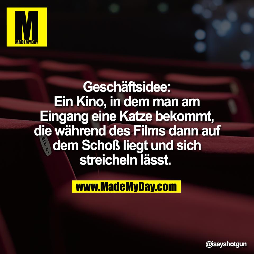 Geschäftsidee:<br /> Ein Kino, in dem man am<br /> Eingang eine Katze bekommt,<br /> die während des Films dann auf<br /> dem Schoß liegt und sich<br /> streicheln lässt.