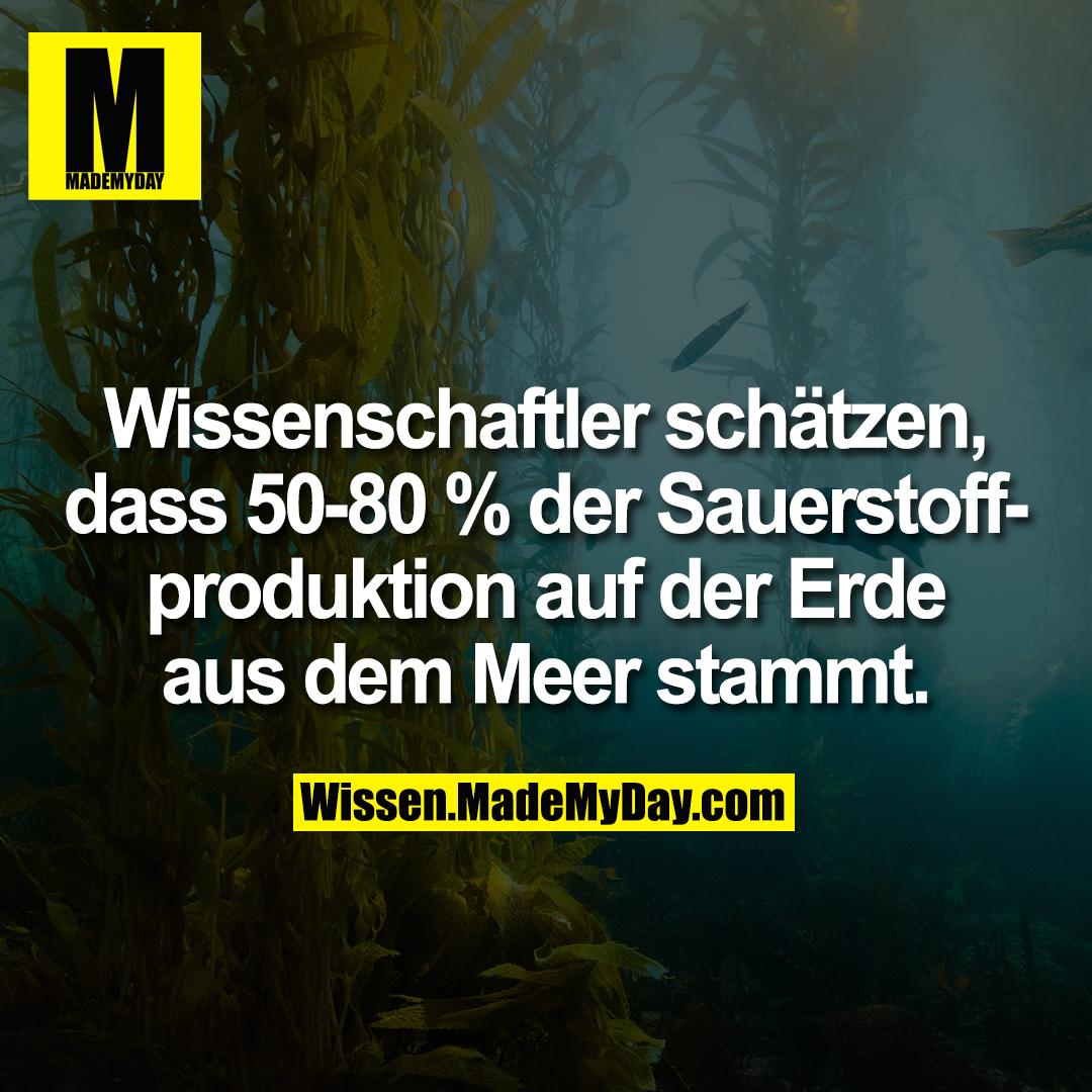 Wissenschaftler schätzen, dass 50-80 % der Sauerstoffproduktion auf der Erde aus dem Meer stammt.
