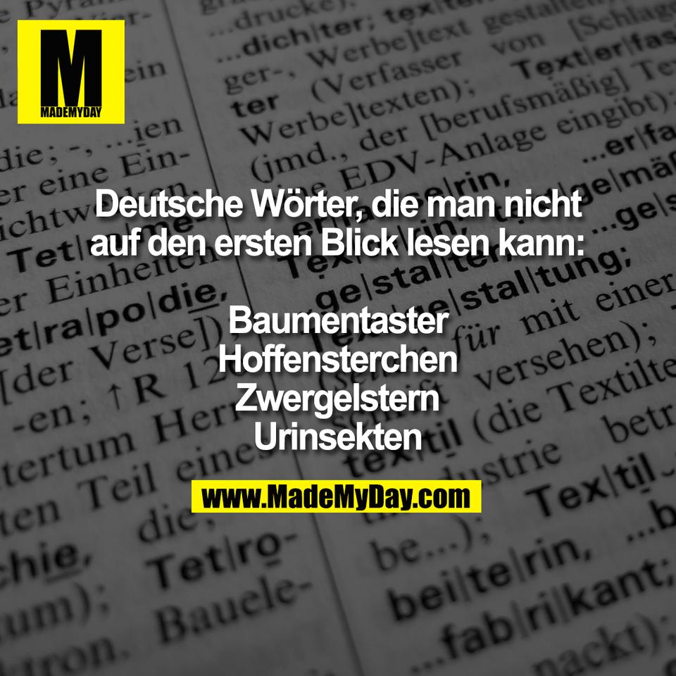 Deutsche Wörter, die man nicht<br /> auf den ersten Blick lesen kann:<br /> <br /> Baumentaster<br /> Hoffensterchen<br /> Zwergelstern<br /> Urinsekten