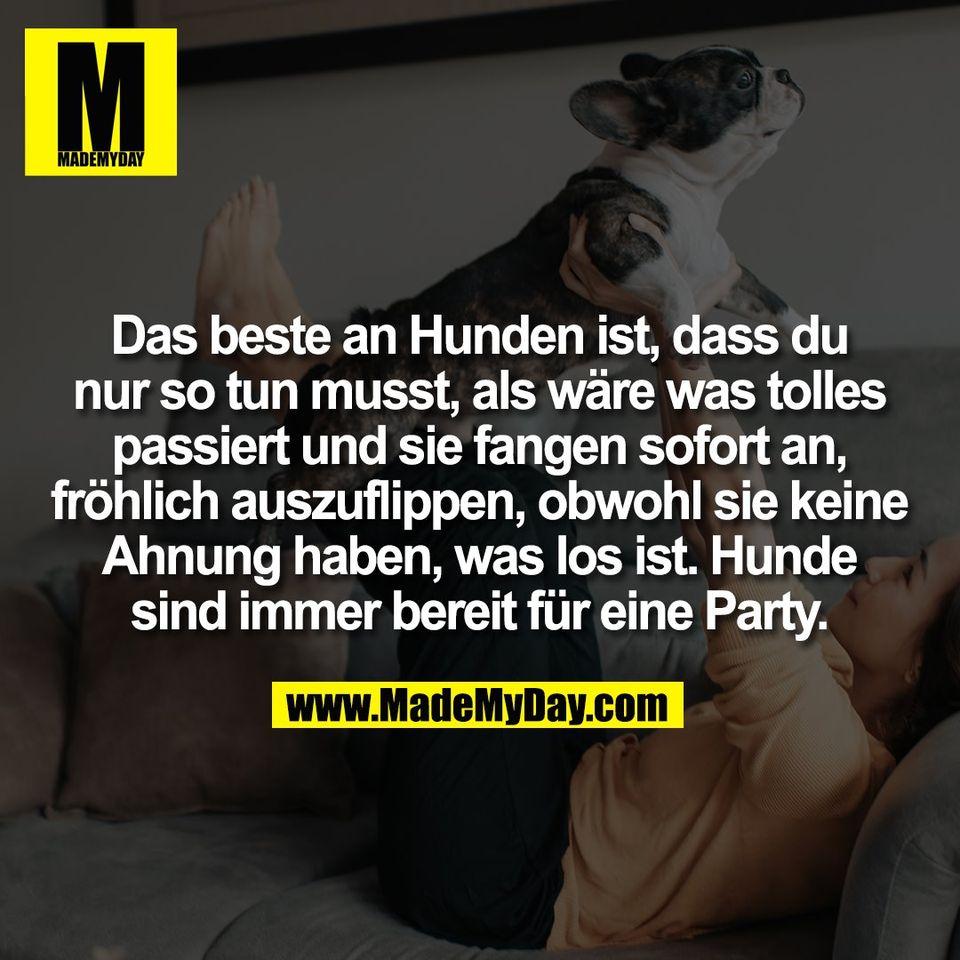 Das beste an Hunden ist, dass du<br /> nur so tun musst, als wäre was tolles<br /> passiert und sie fangen sofort an,<br /> fröhlich auszuflippen, obwohl sie keine<br /> Ahnung haben, was los ist. Hunde<br /> sind immer bereit für eine Party.
