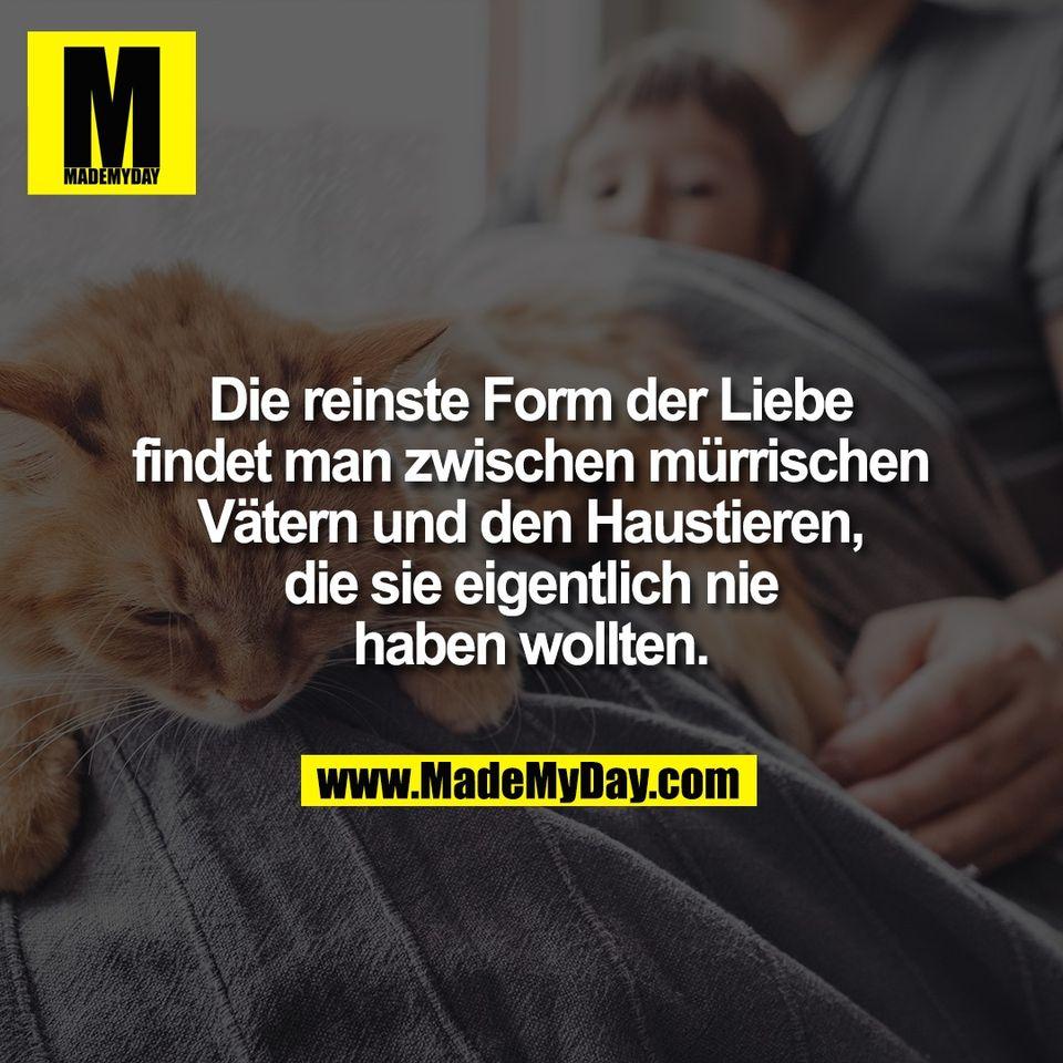 Die reinste Form der Liebe<br /> findet man zwischen mürrischen<br /> Vätern und den Haustieren,<br /> die sie eigentlich nie<br /> haben wollten.