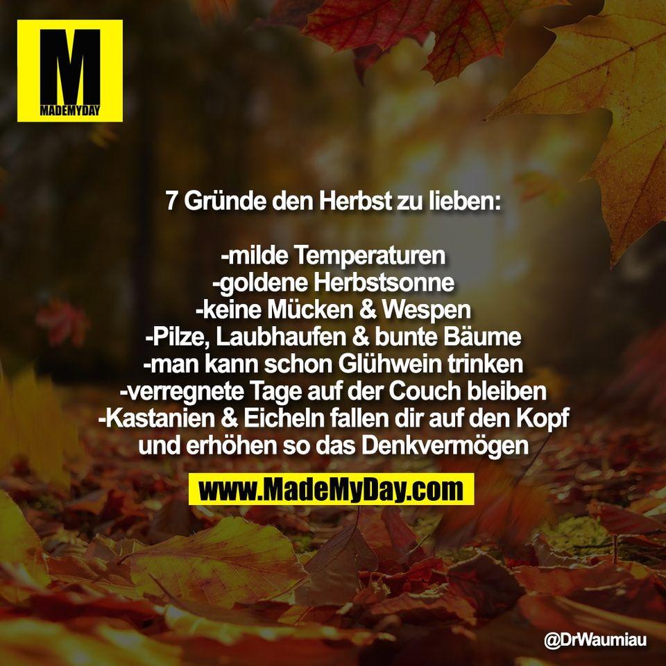 """7 Gründe den Herbst zu lieben:<br /> <br /> -milde Temperaturen<br /> -goldene Herbstsonne<br /> -keine Mücken & Wespen<br /> -Pilze, Laubhaufen & bunte Bäume<br /> -man kann schon Glühwein trinken<br /> -verregnete Tage auf der Couch bleiben<br /> -Kastanien & Eicheln fallen dir auf den Kopf<br /> und erhöhen so das Denkvermögen"""""""