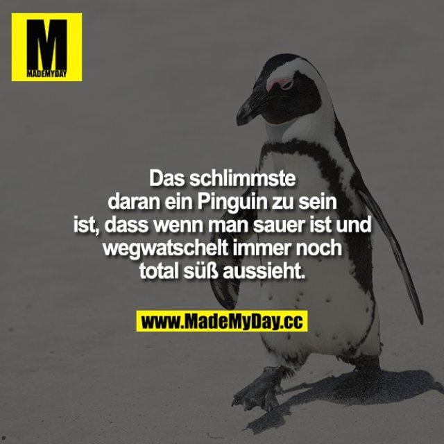 Das Schlimmste daran, ein Pinguin zu sein, ist, dass wenn man sauer ist und wegwatschelt immer noch total süß aussieht.