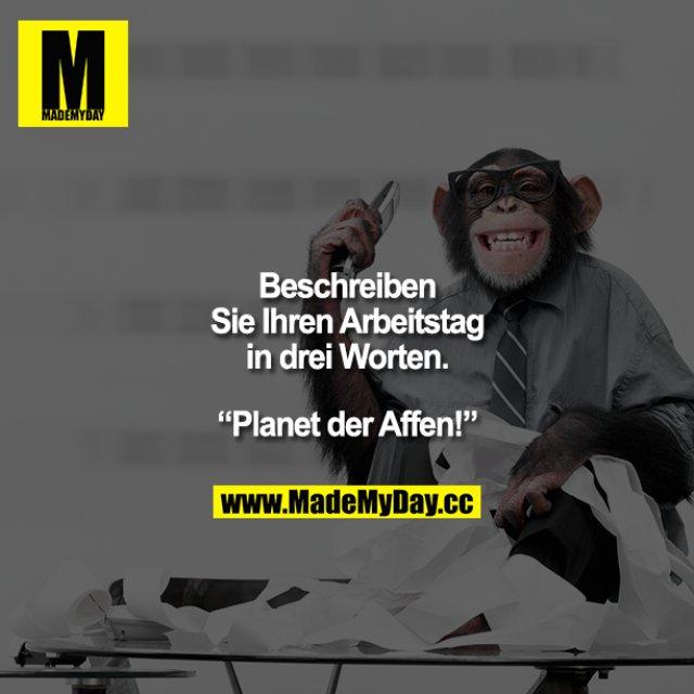 """""""Beschreiben Sie Ihren Arbeitstag in drei Worten.""""<br /> """"Planet der Affen!"""""""