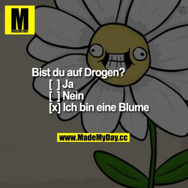 Bist du auf Drogen?<br />  [  ] Ja <br /> [  ] Nein<br /> [x] Ich bin eine Blume