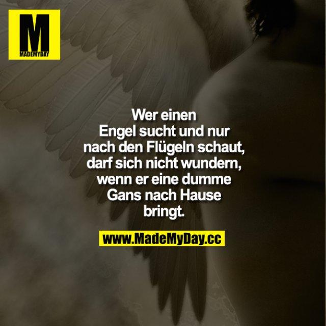 Wer einen Engel sucht und nur nach den Flügeln schaut, darf sich nicht wundern, wenn er eine dumme Gans nach Hause bringt.