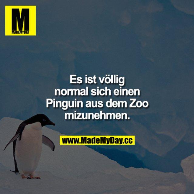 Es ist völlig normal, sich einen Pinguin aus dem Zoo mitzunehmen.