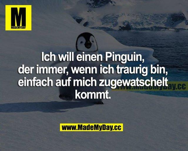 Ich will einen Pinguin, der immer, wenn ich traurig bin, einfach auf mich zugewatschelt kommt.