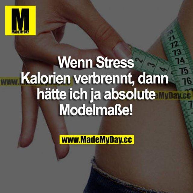 Wenn Stress Kalorien verbrennt, dann hätte ich ja absolute Modelmaße!
