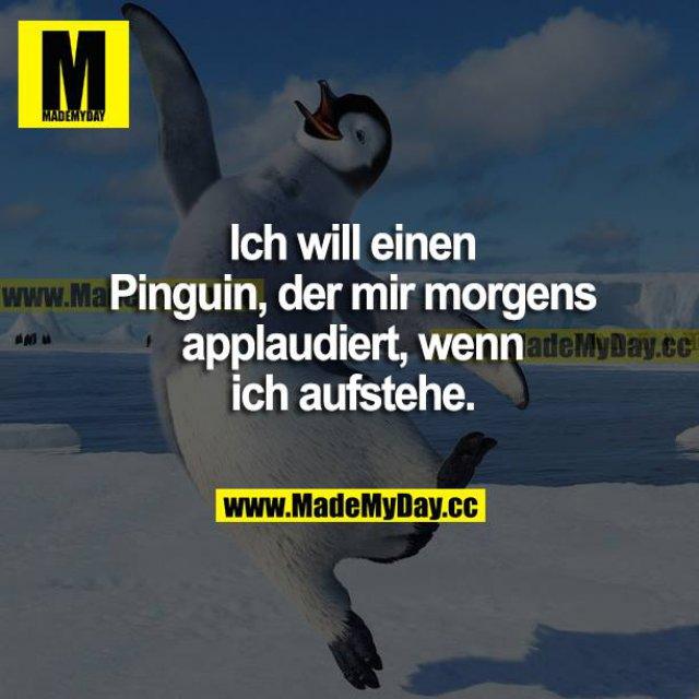 Ich will einen Pinguin, der mir morgens applaudiert, wenn ich aufstehe.