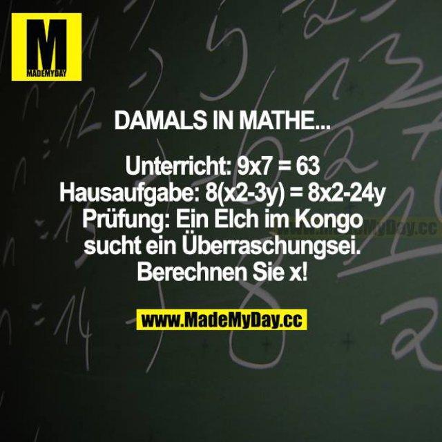 DAMALS IN MATHE...<br /> Unterricht: 9x7 = 63<br /> Hausaufgabe: 8(x2-3y) = 8x2-24y<br /> Prüfung: Ein Elch im Kongo sucht ein Überraschungsei. Berechnen Sie x!