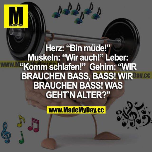 """Herz: """"Bin Müde!"""" Muskeln: """"Wir auch!"""" Leber: """"Komm schlafen!"""" Gehirn: """"WIR BRAUCHEN BASS, BASS! WIR BRAUCHEN BASS! WAS GEHT'N ALTER?"""""""