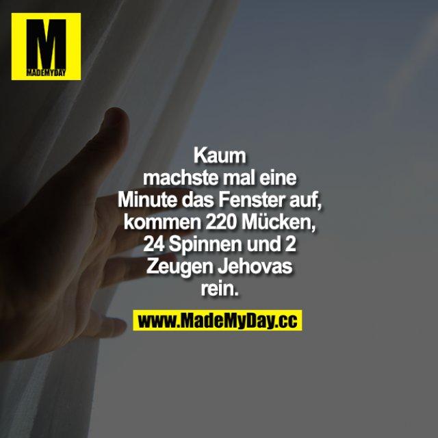 Kaum machste mal eine Minuten das Fenster auf, kommen 220 Mücken, 24 Spinnen und 2 Zeugen Jehovas rein.