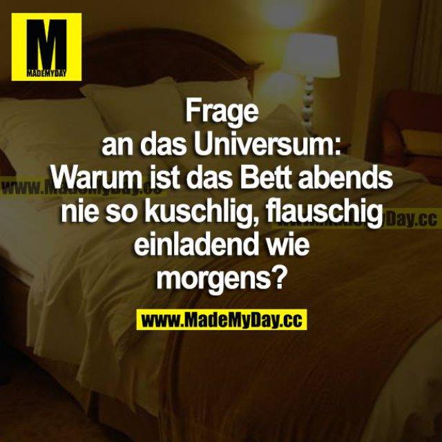Frage an das Universum: Warum ist das Bett abends nie so kuschlig, flauschig einladend wie morgens?