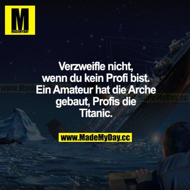 Verzweifle nicht, wenn du kein Profi bist. Ein Amateur hat die Arche gebaut, Profis die Titanic.