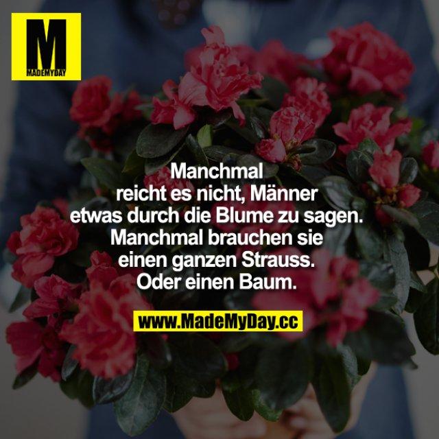 Manchmal reicht es nicht, Männer etwas durch die Blume zu sagen. Manchmal brauchen sie einen ganzen Strauss. Oder einen Baum.