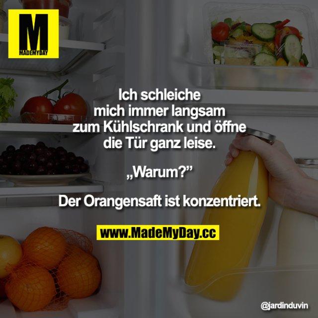 """Ich schleiche mich immer langsam zum Kühlschrank und öffne die Tür ganz leise.<br /> <br /> """"Warum?""""<br /> <br /> Der Orangensaft ist konzentriert."""