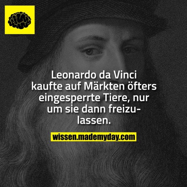 Leonardo da Vinci kaufte auf Märkten öfters eingesperrte Tiere, nur um sie dann frei zu lassen.