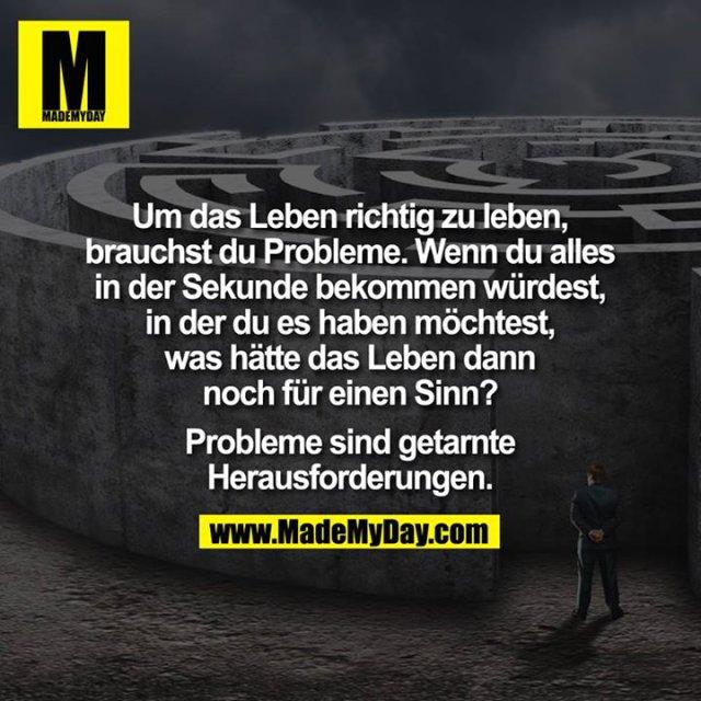 Um das Leben richtig zu leben, brauchst du Probleme. Wenn du alles in der Sekunde bekommen würdest, in der du es haben möchtest, was hätte das Leben denn dann noch für einen Sinn?<br /> Probleme sind getarnte Herausforderungen.