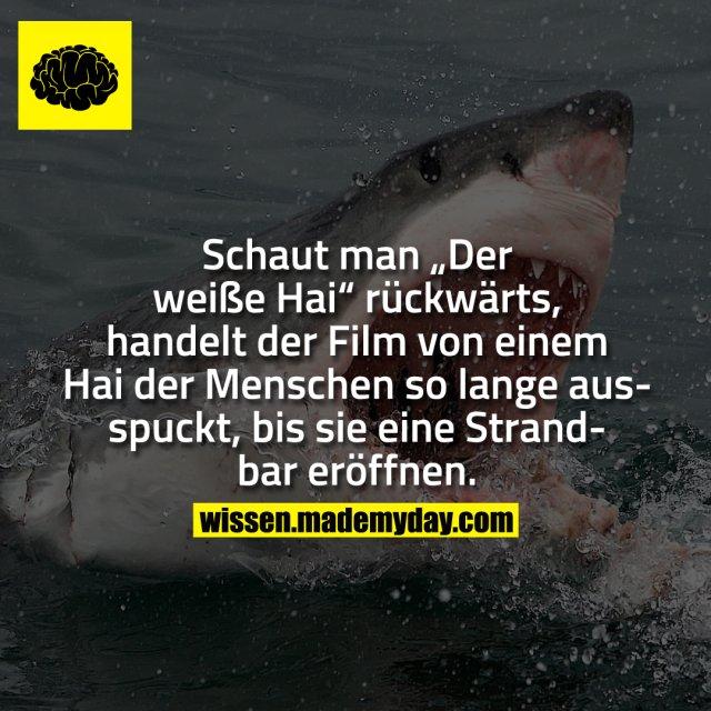 """Schaut man """"Der weiße Hai"""" rückwärts, handelt der Film von einem Hai der Menschen so lange ausspuckt, bis sie eine Strandbar eröffnen."""