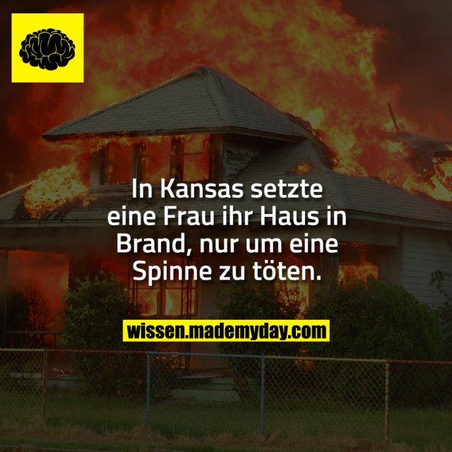 In Kansas setzte eine Frau ihr Haus in Brand, nur um eine Spinne zu töten.