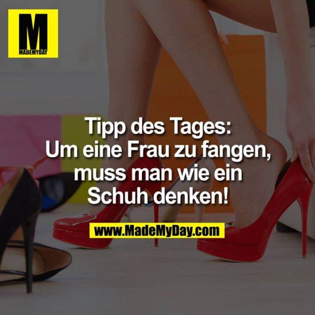 Tipp des Tages:<br /> <br /> Um eine Frau zu fangen, muss man wie ein Schuh denken!