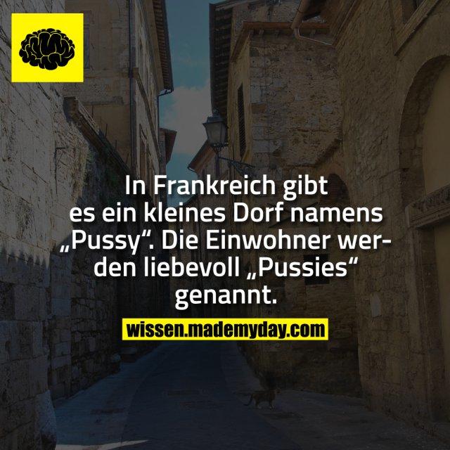"""In Frankreich gibt es ein kleines Dorf namens """"Pussy"""". Die Einwohner werden liebevoll """"Pussies"""" genannt."""