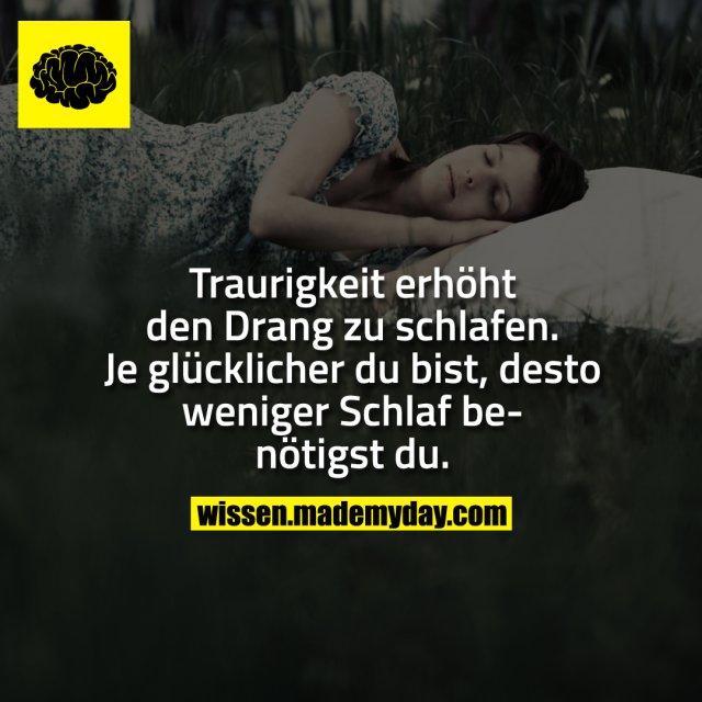 Traurigkeit erhöht den Drang zu schlafen.<br /> Je glücklicher du bist, desto weniger Schlaf benötigst du.