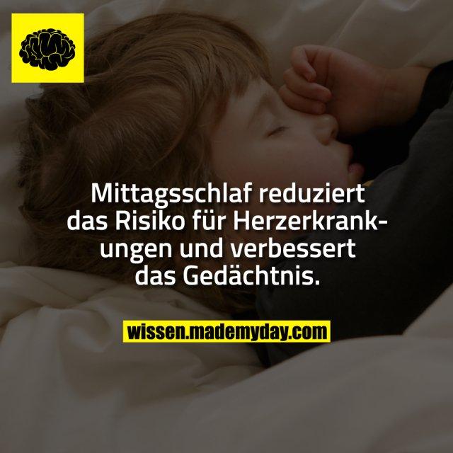 Mittagsschlaf reduziert das Risiko für Herzerkrankungen und verbessert das Gedächtnis.